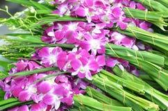 Букеты фиолетовых и белых цветков орхидеи Стоковое Изображение RF