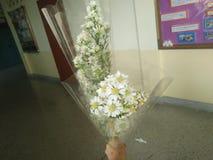 Букеты цветка стоковое изображение rf
