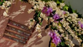 Букеты цветка, пук цветков сток-видео