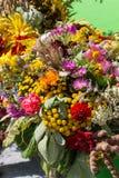 букеты цветков и трав Стоковое Фото