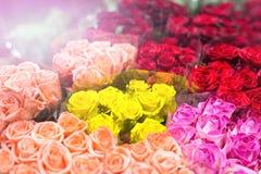 Букеты multiclored роз цветок предпосылки свежий Обслуживание флориста Цветочный магазин свадебного подарка оптовый Хранение a цв Стоковое Фото