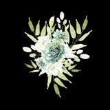 Букет акварели с кактусами и succulents Стоковые Фото