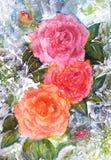 Букет акварели roz Rozy, листья, всходы чувствительные цветки тени пинка в цветках Стоковое фото RF