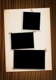 букет альбома украсил сбор винограда фото hollyhocks рамки цветков иллюстрация вектора