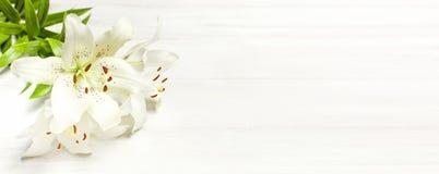 Букет белых лилий на белом деревянном взгляд сверху предпосылки Цветет цветки красивого букета лилии белые стоковое изображение rf