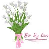 Букет белых тюльпанов изолированных с надписью для моей любов иллюстрация вектора