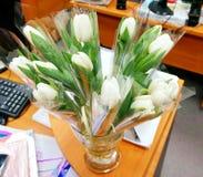 Букет белых тюльпанов Стоковые Фотографии RF