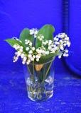 Букет белых лилий долины зацветая с зеленым цветом выходит в стекло на голубую предпосылку Стоковое фото RF