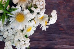 Букет белых маргариток Стоковое фото RF