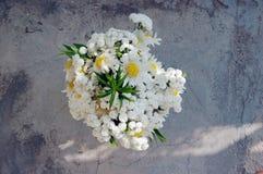 Букет белых маргариток Стоковая Фотография RF