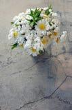 Букет белых маргариток Стоковая Фотография