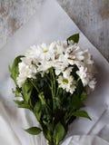 Букет белых цветков хризантемы Стоковое Изображение RF