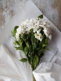 Букет белых цветков хризантемы Стоковая Фотография