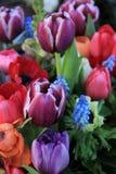 Букет весны в ярких цветах стоковая фотография rf