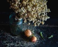 Букет высушенных цветков в вазе Стоковые Изображения RF