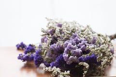 Букет высушенных цветков statice стоковое изображение rf
