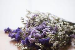 Букет высушенных цветков statice стоковые фото