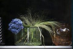 Букет вянуть голубого цветка гортензии, хлопьев в вазе семидесятые годы-стиля в окне магазина Стоковая Фотография RF
