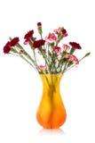 Букет гвоздики в вазе Стоковые Фотографии RF
