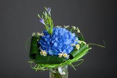 Букет голубых цветков гортензии Стоковая Фотография