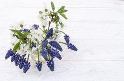 Букет голубых цветков, bluebells и белых вишен в опарнике воды на светлой предпосылке o стоковые фото