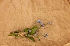 Букет голубой незабудки цветет на старом rumpled желтом цвете стоковое фото