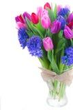 Букет голубых гиацинта и тюльпанов Стоковые Фотографии RF
