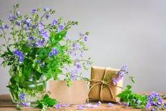 Букет голубых цветков персиянки veronica в стеклянной вазе, подарке Стоковое Изображение