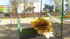 Букет желтых листьев на качании стоковая фотография rf