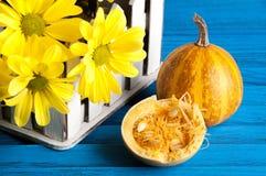 Букет желтых маргариток и тыквы Стоковые Изображения