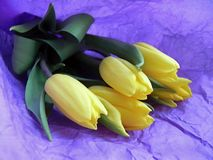 Букет желтых тюльпанов на фиолетовой бумаге стоковые изображения