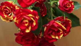 Букет желтого цвета красных роз появляется в зону сметливости акции видеоматериалы