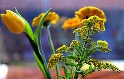 Букет желтых цветков стоковое фото