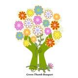 Букет зеленого большого пальца руки Стоковое Фото