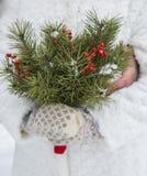 Букет зимы Стоковое Изображение