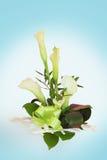 Букет лилии Calla стоковые изображения rf