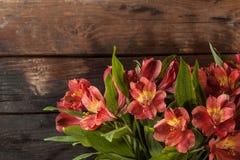 Букет красной лилии Стоковая Фотография RF