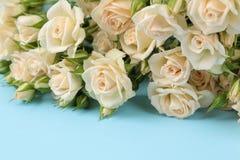 Букет красивого нежного мини конца-вверх роз на яркой голубой предпосылке праздники presents стоковые изображения