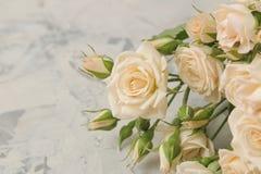 Букет красивых нежных мини роз на светлой конкретной предпосылке Космос для текста стоковая фотография