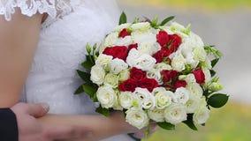 Букет красного цвета и белых роз в руках невесты, девушки в белом платье стоя с пестроткаными цветками внутри сток-видео