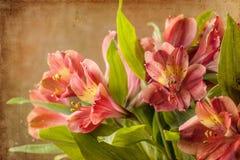 Букет красной лилии Стоковое фото RF