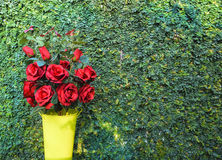 Букет красной розы на день валентинки Стоковые Изображения