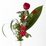 Букет красной розы с красным плюшевым медвежонком Стоковые Фото