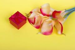 Букет красных желтых лилий calla с красными подарочной коробкой и лентой на желтой предпосылке картона Стоковая Фотография