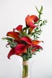 Букет красных лилий calla Стоковое Изображение