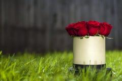 Букет красных роз в белой подарочной коробке на предпосылке зеленой травы Стоковое фото RF