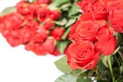 Букет красных роз для романтичной предпосылки подарка Стоковые Изображения
