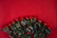 Букет красных роз конца-вверх красивый на красной предпосылке для valen Стоковые Фотографии RF