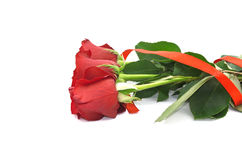 Букет красных роз при лента изолированная на белой предпосылке Стоковая Фотография RF