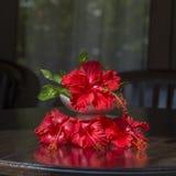 Букет красных тропических цветков в белой керамической вазе стоит в деревянном столе bali Индонесия конец вверх стоковые изображения